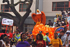 Eagle Reprezentuje zulu narodu Obraz Royalty Free