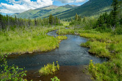 Eagle River Nature Center in Alaska Stock Photos