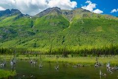 Eagle River Nature Center en Alaska Imagenes de archivo