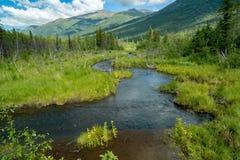 Eagle River Nature Center en Alaska Fotos de archivo