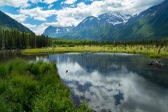 Eagle River Nature Center i Alaska Arkivbilder