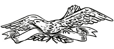 Eagle with scroll Royalty Free Stock Photo