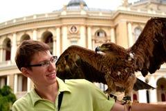 Eagle se sienta en el hombro joven de los man's Imagenes de archivo