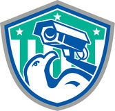 Eagle Security CCTV Camera Retro Shield Royalty Free Stock Photo