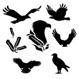 Eagle set vector. Eagle set of black silhouettes. Icons and illustrations of animals. Wild animals pattern vector illustration