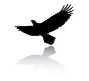Eagle silhouette Royalty Free Stock Photo