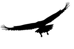 Eagle silhouette Royalty Free Stock Photo