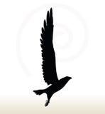 Eagle Silhouette Stock Fotografie