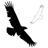 Eagle silhouette. An Eagle silhouette, also with a drawn outline vector illustration
