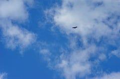 Eagle silhouette Stock Photo