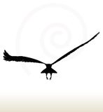 Eagle silhouette Stock Photography