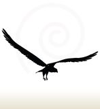 Eagle silhouette Royalty Free Stock Images