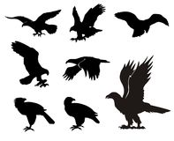 Eagle-silhouetten Stock Illustratie