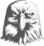 Eagle Silhouettes Vector - Front View Stock Photography