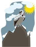 Eagle sitzt auf einem Berg Stockfotos