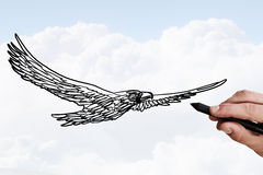 Eagle sketch. Person drawing flying eagle bird on sky background Stock Images
