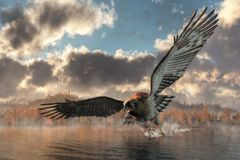 Eagle Skimming a Lake vector illustration