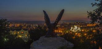 Eagle skulpturkontur i natten Pyatigorsk Royaltyfri Fotografi
