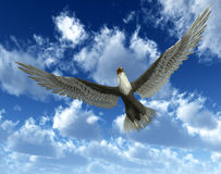 Eagle In Sky 33. An eagle flying high in the sky Royalty Free Stock Image