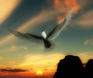 Eagle In Sky 33. An eagle flying high in the sky Royalty Free Stock Photography