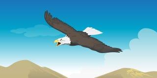 Eagle soaring. Cartoon  illustration of an eagle soaring Royalty Free Stock Photography