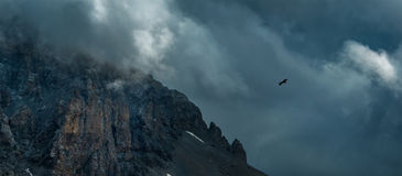 Eagle soaring near rock Zagedan. Dramatic overcast sky. Royalty Free Stock Images
