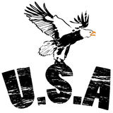 Eagle soaring with usa. In grunge illustration Royalty Free Stock Photo