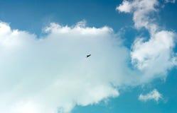 Eagle sobe nas nuvens, contra o c?u azul foto de stock royalty free