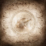 Eagle Spirit. Eagle head enclosed within a corroded ring of mysterious carved runic symbols against a background of intricate circular Celtic style patterns Royalty Free Stock Photography