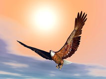 Eagle by sunset - 3D render Stock Image