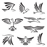 Eagle symbols. Set of nine eagle symbols Stock Image
