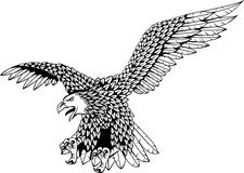 Eagle tatoo Royalty Free Stock Photography
