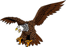 Eagle tatoo Stock Photography