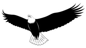 Eagle, tattoo Royalty Free Stock Photography