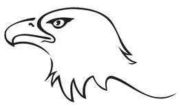 Eagle tattoo. Illustration of eagle head isolated on white background Stock Images