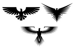 Eagle tattoos Royalty Free Stock Image