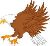 Eagle tecknad film Arkivbilder