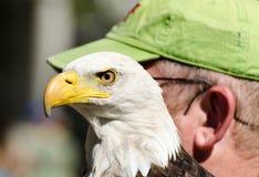 Eagle und Mann Lizenzfreies Stockbild