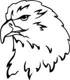 Eagle vector Stock Image