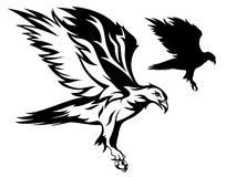 Eagle vector. Flying eagle black and white illustration Stock Photography