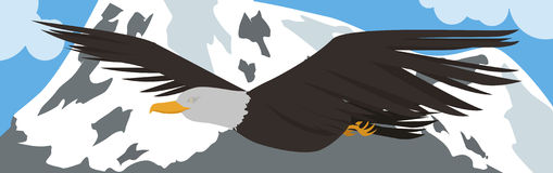 Eagle vector Stock Photography