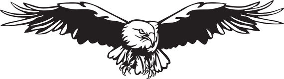 Eagle Vector. Black and White Eagle Vector illustration Royalty Free Stock Photography