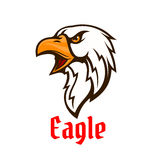 Eagle vector emblem. Hawk graphic symbol Stock Image