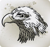 Eagle. Vector illustration. Art eagle bird. Vector illustration Stock Photo