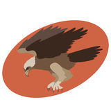 Eagle  vector illustration style Flat profile Royalty Free Stock Image