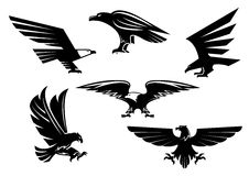 Eagle vector isolated icons, heraldic bird emblems Stock Photography