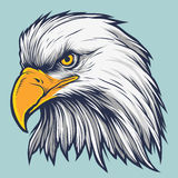 Eagle Vector Stock. Hand drawn American band eagle, up to 5 colors in vector format royalty free illustration