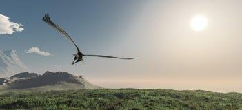 Eagle volant dans les nuages images stock