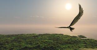 Eagle volant dans les nuages image stock