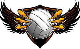 Free Eagle Volleyball Talons And Claws Royalty Free Stock Image - 24485246
